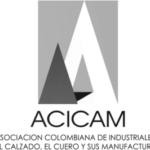 Logo-Acicam-grises_large